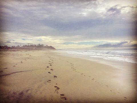 San Diego - Encinitas - Cardiff State Beach