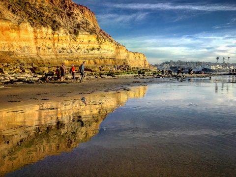 Coastal Del Mar